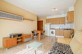 Imagen sin descripción - Apartamento en alquiler en Blanes - 335181565