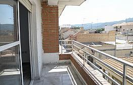 Balcón - Piso en alquiler en calle Floridablanca, Palmar, el (el palmar) - 283568515