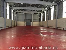 Nave industrial en alquiler en carretera Porriño Salceda, Porriño (O) - 326566606