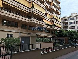 Img_0026 - Piso en alquiler en Urbanitzacions Llevant en Palma de Mallorca - 333221579