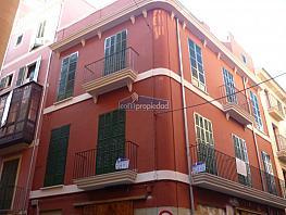 Loft en casco antiguo - palma 1 - Piso en alquiler en calle Hostals, Urbanitzacions Llevant en Palma de Mallorca - 355485047