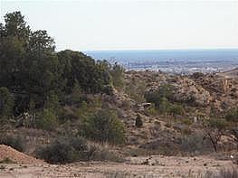 Terrain de vente à San Vicente del Raspeig/Sant Vicent del Raspeig - 126433860