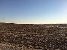 Landgut in verkauf in calle Martires, Álamo (El) - 150845928