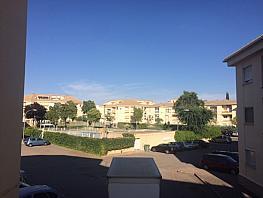 Jardín - Piso en alquiler en calle Cardenal Lorenzana, Ciudad Real - 337954166