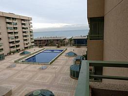 Apartamento en alquiler en calle Mare Nostrum, Alboraya - 330092904