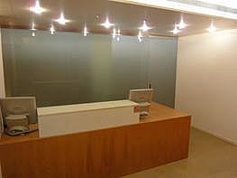 Imagen del inmueble - Local comercial en alquiler en paseo Gran de Ronda, Lleida - 245484975