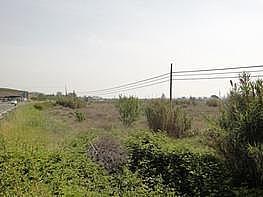 Grundstück in miete in calle , Lleida - 226003020