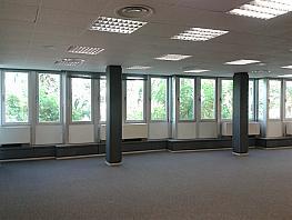 Oficina en alquiler en calle Diagonal, Eixample esquerra en Barcelona - 259302501