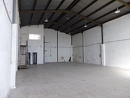 Foto - Nave industrial en alquiler en polígono Carrus, Elche/Elx - 330008949