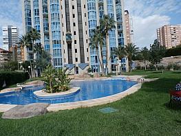 Foto - Apartamento en alquiler en Poniente en Benidorm - 285089867