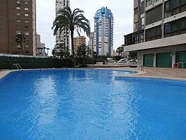 Foto - Apartamento en venta en Levante en Benidorm - 325612112