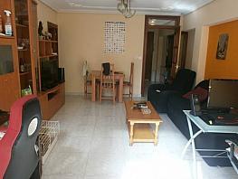 Foto - Piso en venta en Zona centro en Benidorm - 371783929