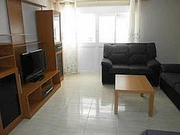 Foto - Apartamento en venta en Zona centro en Benidorm - 176666466