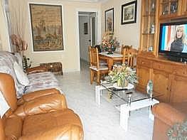Foto - Piso en venta en Benidorm - 176664138