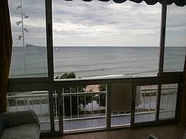 Foto - Apartamento en venta en Poniente en Benidorm - 176665938