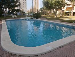 Foto - Piso en venta en Levante en Benidorm - 272975952