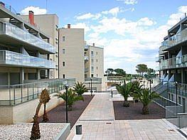 - Apartamento en venta en Alcossebre - 141671946