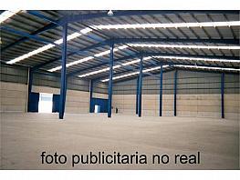 Nave industrial en alquiler en Lleida - 379614094