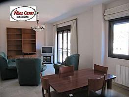 Piso en alquiler en calle Constitucion, Beiro en Granada - 307434019