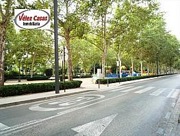 Piso en alquiler en paseo De la Bomba, Genil en Granada - 330448751