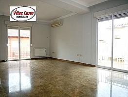 Piso en alquiler en paseo Del Salon, Genil en Granada - 333698019
