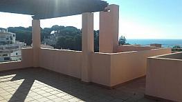 Villa en alquiler en calle Amanecer, Benalmádena Costa en Benalmádena - 331583355