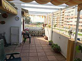 Foto - Piso en alquiler en calle El Tejarhacienda Bizcochero, El Cónsul-Ciudad Universitaria en Málaga - 330231846