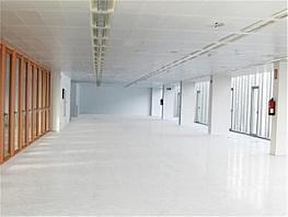 Oficina en alquiler en Nueva España en Madrid - 348296532