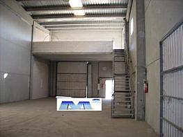 Nave industrial en alquiler en Garena en Alcalá de Henares - 363765253