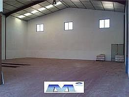 Nave industrial en alquiler en Ajalvir - 126212545