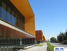 Oficina en alquiler en Moraleja, La - 324325585