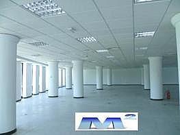 Oficina en alquiler en Moraleja, La - 214216919