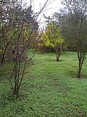 Casa rural en venda carretera General de Tacoronte, Tacoronte - 128851025