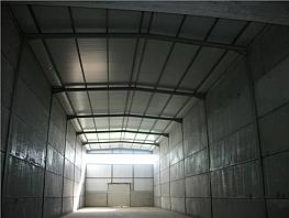 Nau industrial en lloguer Santpedor - 315059519