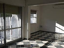 Foto - Chalet en alquiler en Bellavista – La Palmera en Sevilla - 261288531