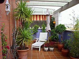 Foto - Ático en alquiler en San Pablo-Santa Justa en Sevilla - 301084034