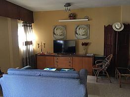 Foto - Apartamento en alquiler en Santa Cruz en Sevilla - 322274360