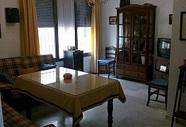Foto - Bajo en alquiler en Triana en Sevilla - 333165835