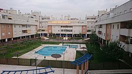 Foto - Piso en alquiler en Montequinto en Dos Hermanas - 333767808