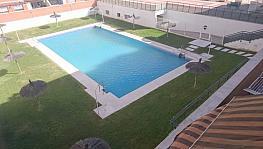 Foto - Piso en alquiler en Montequinto en Dos Hermanas - 352801042