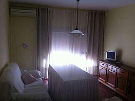 Foto - Piso en alquiler en La Palmera en Sevilla - 377319726