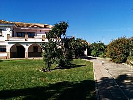 Foto - Chalet en alquiler en Montequinto en Dos Hermanas - 380369143
