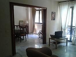 Foto - Piso en alquiler en San Bernardo en Sevilla - 241523625
