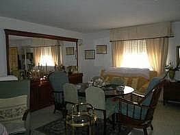 Foto - Casa en alquiler en Montequinto en Dos Hermanas - 184829090