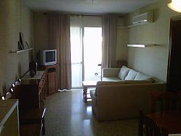 Foto - Piso en alquiler en Montequinto en Dos Hermanas - 277292183