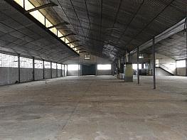 Nave industrial en castellbisbal de 3.228m2 - Nave industrial en alquiler en Castellbisbal - 359208411