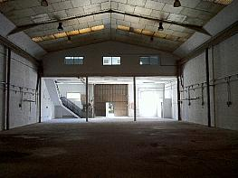 Nave industrial en molins de rei de 1.000m2 - Nave industrial en alquiler en Molins de Rei - 359214828