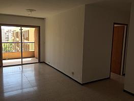Piso en alquiler en calle Jorge Manrique, Zona Centro en Santa Cruz de Tenerife - 305623315