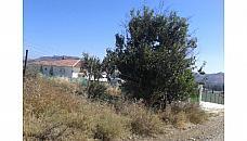 Chalets Cártama