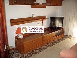 Foto - Piso en alquiler en calle Torreta Portalada, El Raval - Centro en Elche/Elx - 336439066